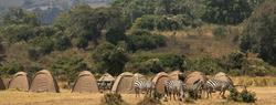 camping_safari