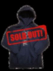 Hoodies_2017_sold.png