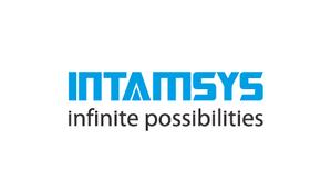 intamsys-3.png