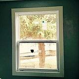 Single Hung Window 06-04-2017-min_edited