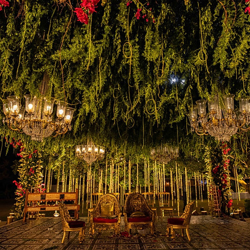 Wedding under the Chikoo Tree