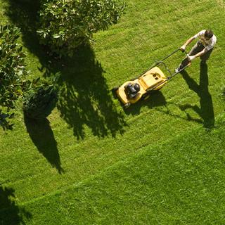 Man Gräsklippning