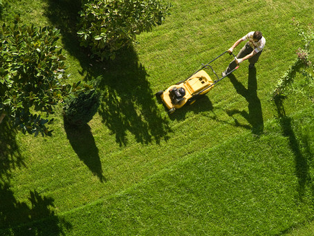 How Much Money Can You Really Make by Mowing Lawns?