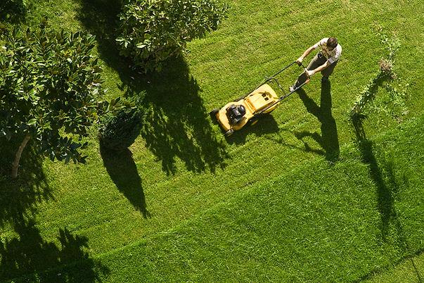 Человек, косящий газон