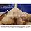 Thumbnail: Carpathian Seed Garlic