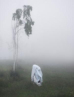 SINIKOSKI_New Ghosts n°102.jpg