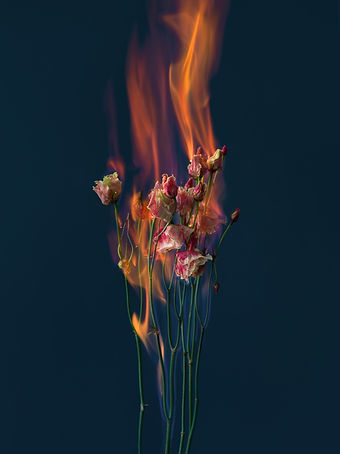 SINIKOSKI_Ghost Study with Flowers n°15.
