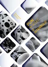 Branko_Čegec_:_Pun_mjesec_u_Istanbulu.p
