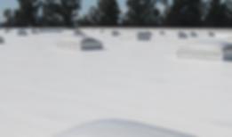 elastomeric roof