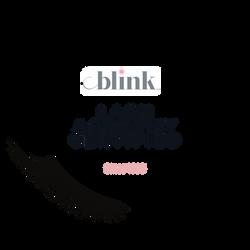 blink academy