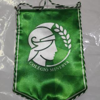Bandeiras e Galhardetes