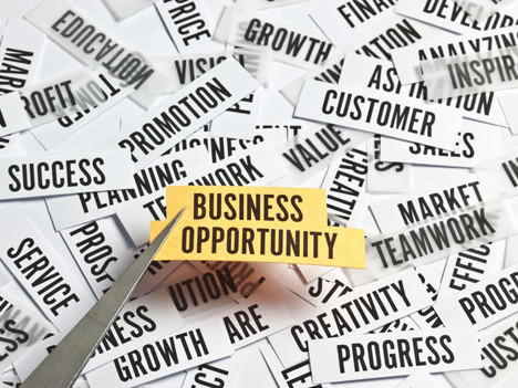 Growing Your Business During a Pandemic - Reality or Possibility?