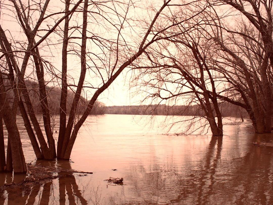 January on the Potomac