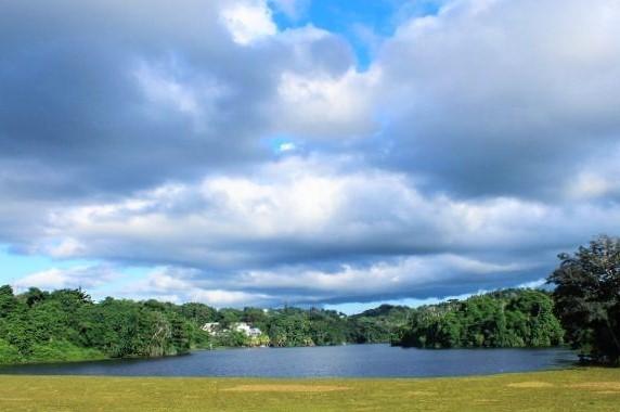 lago curias