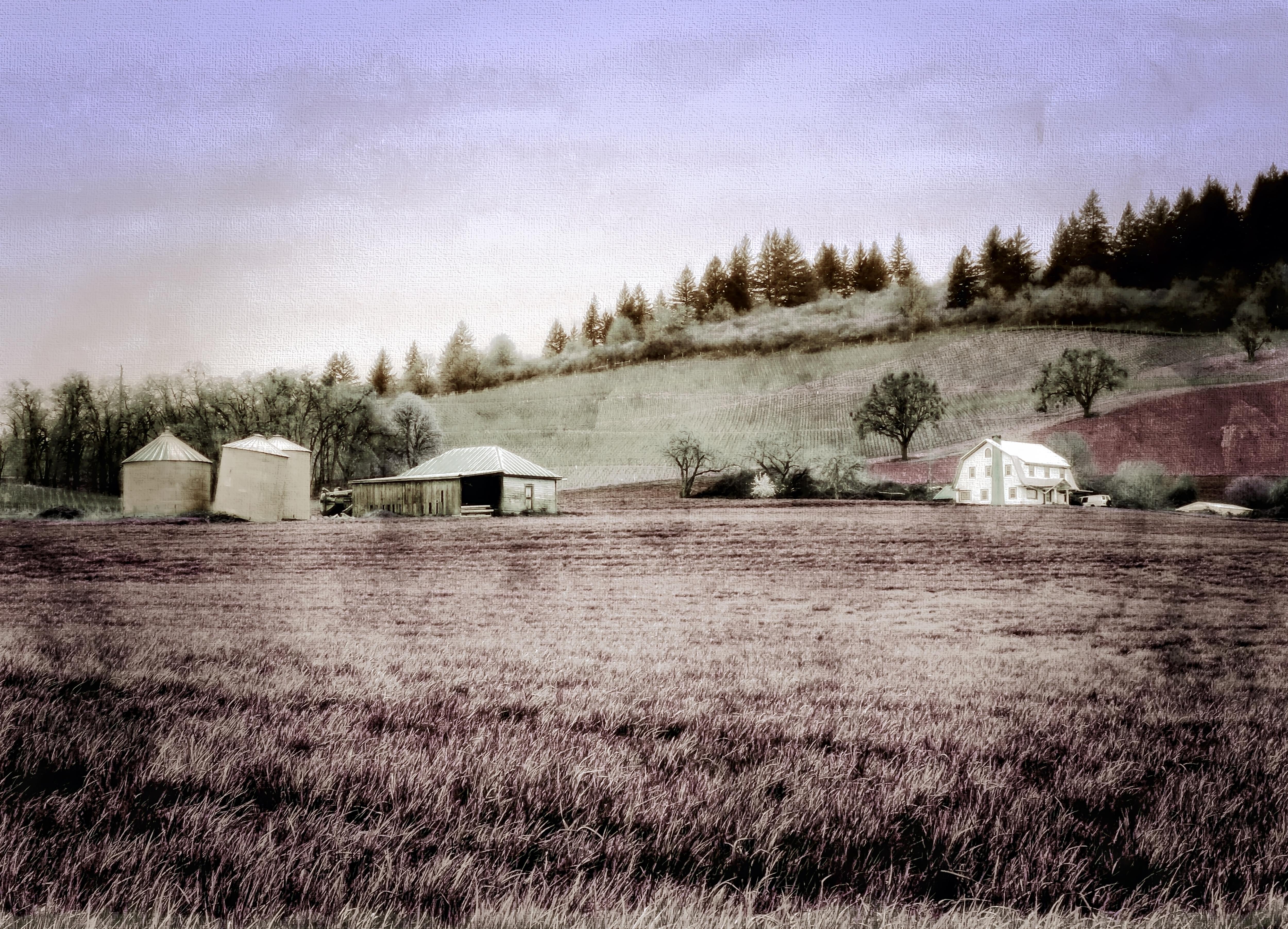 Rural_Routes4