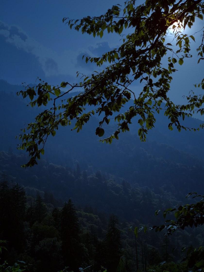 Night on an Appalachian Trail