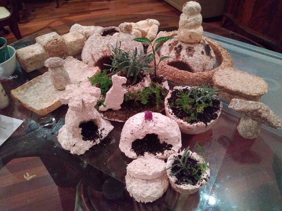 Mycelium Material