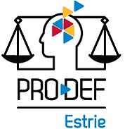 prodef_logo (1) (1).png