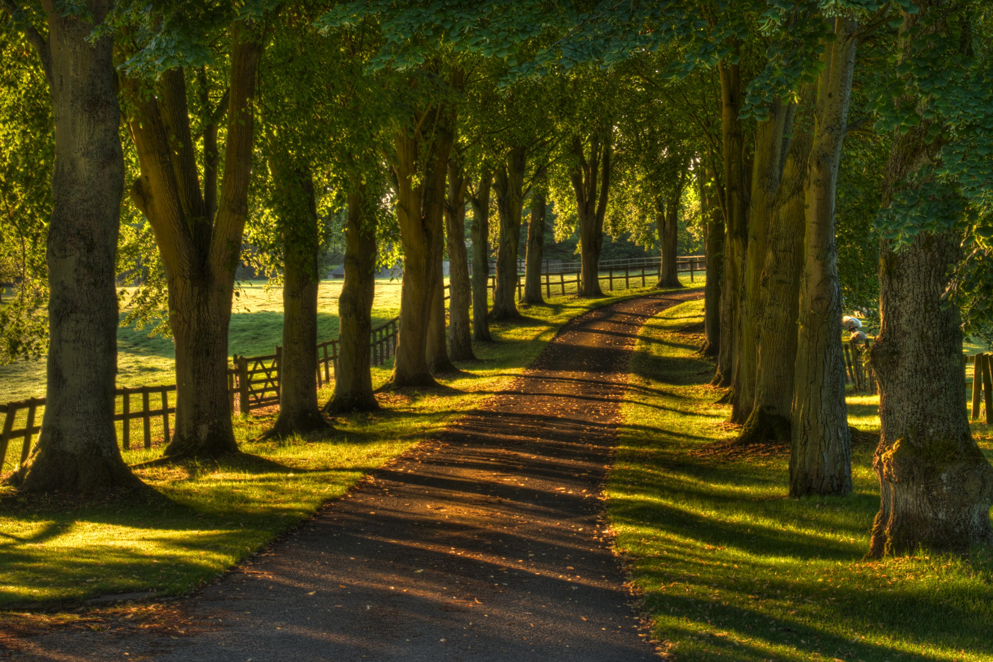 Oxfordshire Driveway, UK