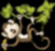 tita_fmacacada_monkey 02.png