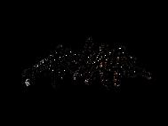 Logo-Arthur-Dorval-noir.png