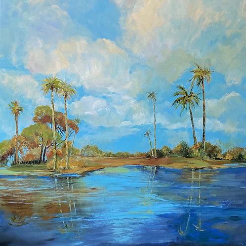 Everglades Beauty