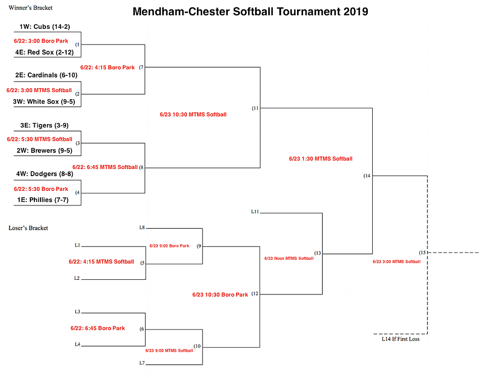 Mendham Softball Tournament 2019.png