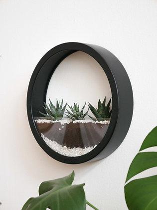 Кашпо Black Plants Bag L с суккулентами