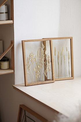 Сэт Triticum/ Dried Plants Pattern M #1