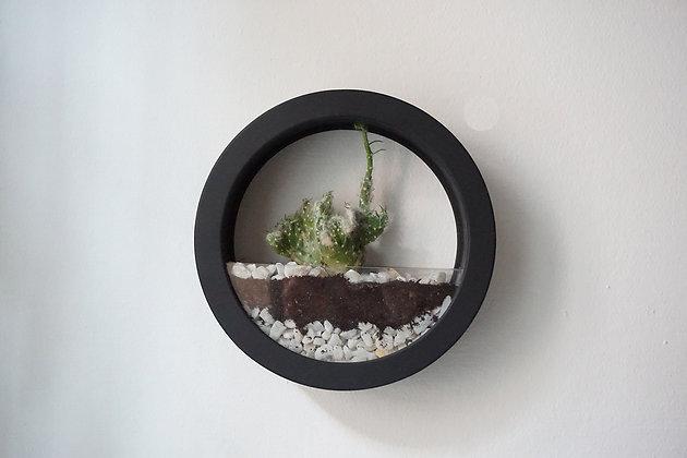 Black Plants Bag S