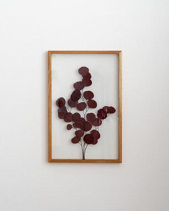 Populus Red L