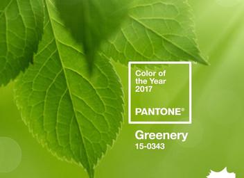 Pantone 2017 и  My Botanica!
