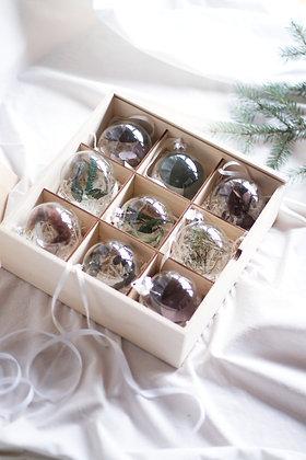 Набор Сhristmas Ornaments №3 с растениями