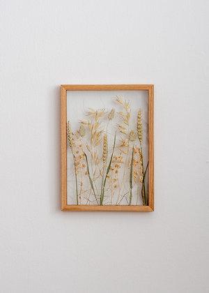 Dried Plants Pattern M #1