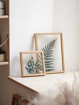 Сэт Fern/ Parvifolia Green
