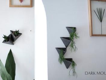 Дизайнерские решения для озеленения в интерьере