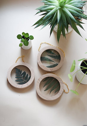 Set of 3 Fern Botanical Postcards