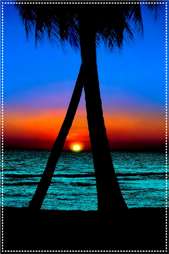 Tropical Paradise - Photo Source Pinterest