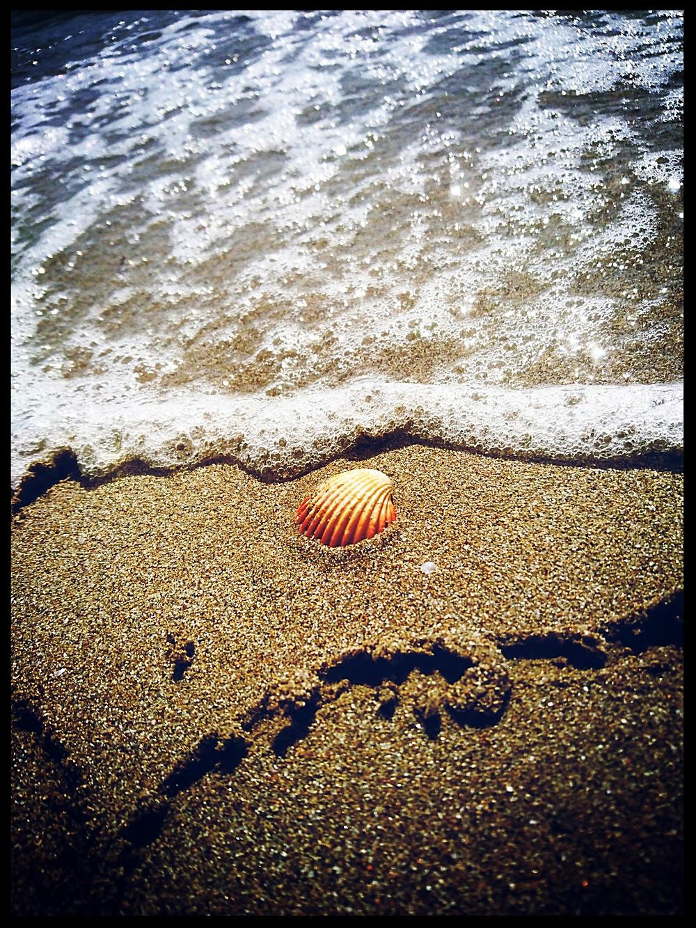 Summer Heart - Photo credits Mary Samou