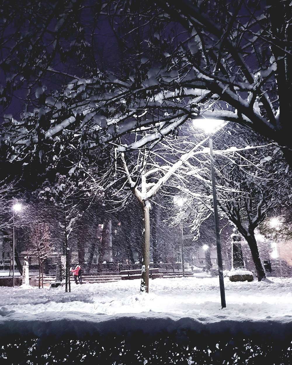 Snow in the park - Photo by Mary Samou