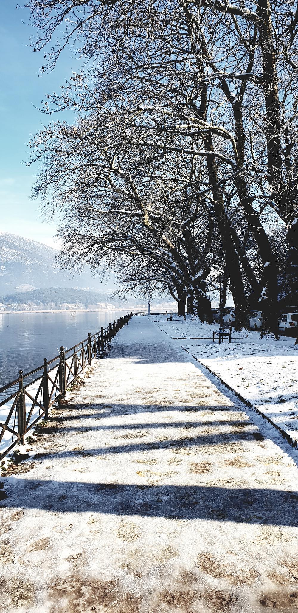 Lake Pamvotis in white - Photo by Mary Samou