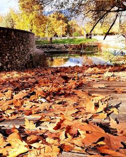 Winter days in Ioannina