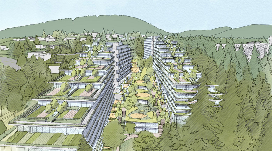 The Terraces neighbourhood