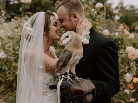 Styled Shoot - The Owls of Edmondsham House