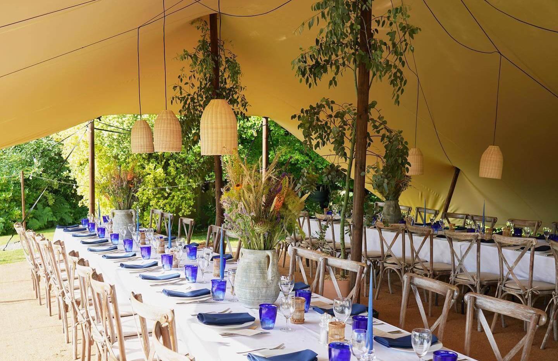 Whitestem - Living Tree Wedding Decor Dorset