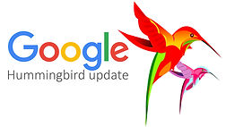 hummingbird update.jpg