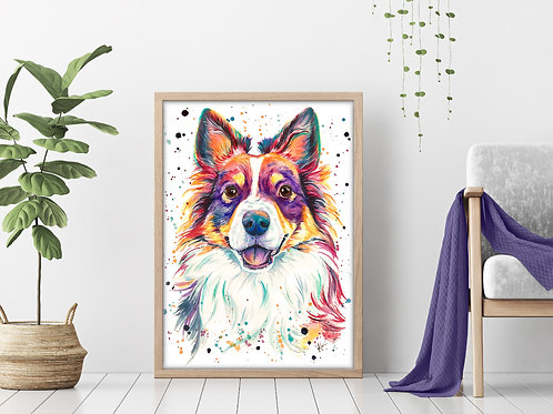 Mini Australian Shepherd - Colorful Watercolor Print