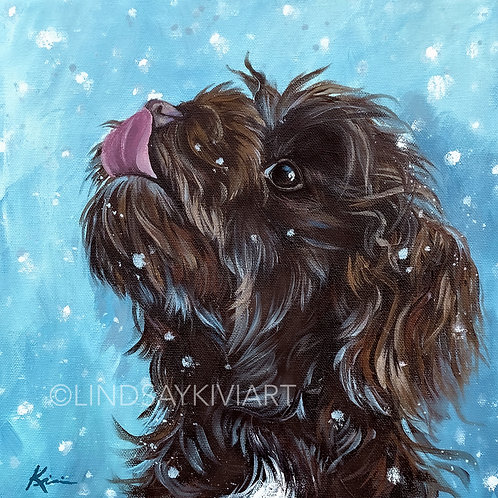 """Havanese"" 12x12 Acrylic Painting **FLOATER FRAME INCLUDED"