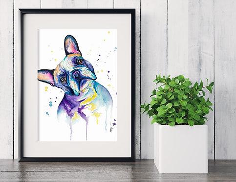 French Bulldog - Colorful Watercolor Print