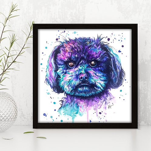 Toy Poodle - Colorful Watercolor Print